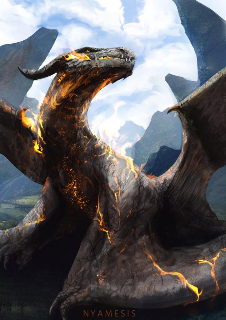 2014 nyamesiss - dragon