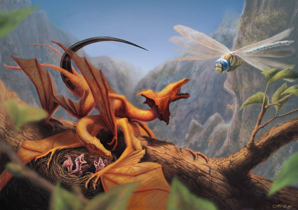 2015 quentin v castel four-winged dragons